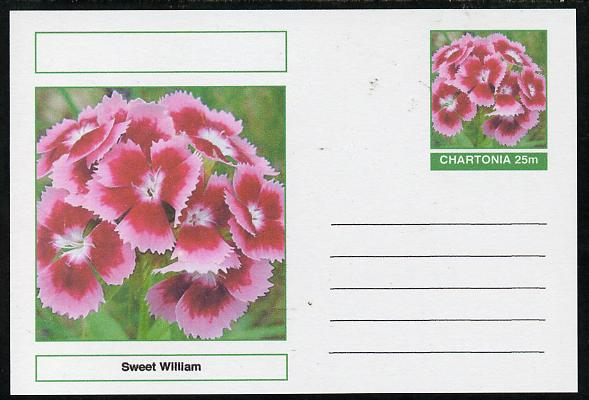 Chartonia (Fantasy) Flowers - Sweet William postal stationery card unused and fine