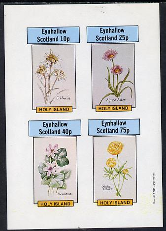 Eynhallow 1981 Flowers #03 (Edelweiss, Alpine Aster, Hepatica & Globe Flower) imperf  set of 4 values (10p to 75p) unmounted mint