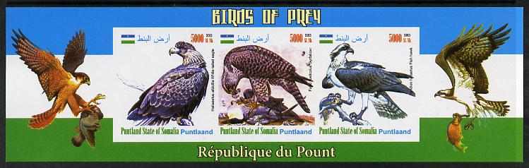 Puntland State of Somalia 2011 Birds of Prey imperf sheetlet containing 3 values unmounted mint