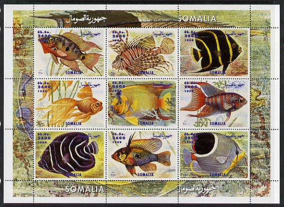 Somalia 1999 Fish perf sheetlet containing 9 values unmounted mint. Note this item is privately produced and is offered purely on its thematic appeal