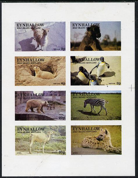 Eynhallow 1977 Zoo Animals (Penguin, Zebra, Monkey, Bear, etc) imperf  set of 8 values (1p to 30p) unmounted mint, stamps on animals    apes   penguins      polar    bear    zoo    zebras, stamps on  zoo , stamps on zoos, stamps on , stamps on zebra