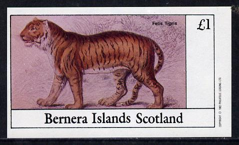 Bernera 1982 Animals (Tiger) imperf souvenir sheet (�1 value) unmounted mint