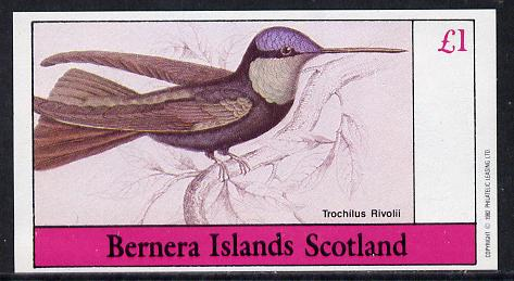 Bernera 1982 Humming Birds (Trochilus R) imperf souvenir sheet (�1 value) unmounted mint